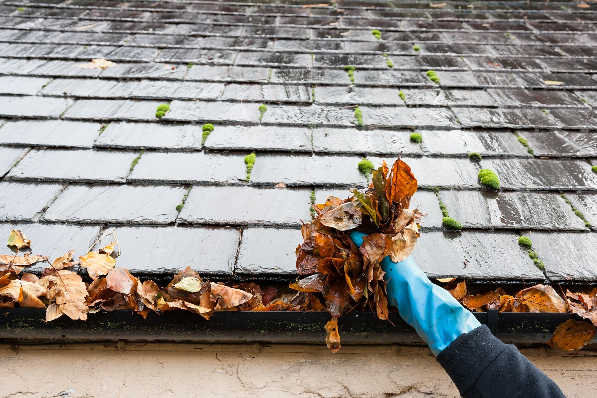 driveway cleaning colchester